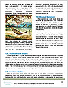 0000078130 Word Template - Page 4