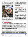 0000078132 Word Template - Page 4