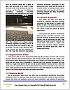 0000078142 Word Templates - Page 4