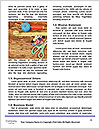 0000078151 Word Templates - Page 4