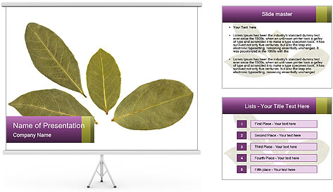 0000078154 PowerPoint Template