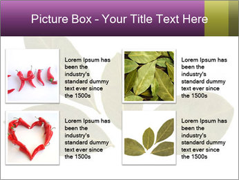 0000078154 PowerPoint Template - Slide 14