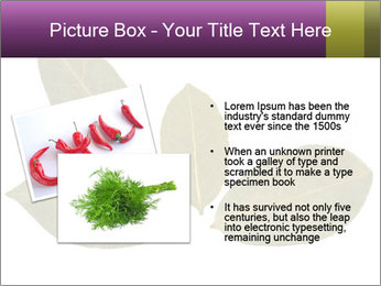 0000078154 PowerPoint Template - Slide 20