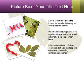 0000078154 PowerPoint Template - Slide 23