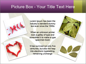 0000078154 PowerPoint Template - Slide 24