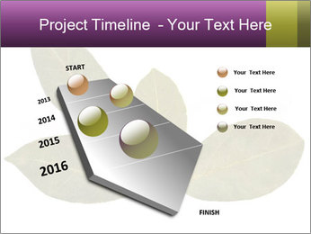 0000078154 PowerPoint Template - Slide 26