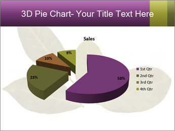 0000078154 PowerPoint Template - Slide 35