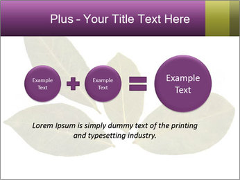 0000078154 PowerPoint Template - Slide 75