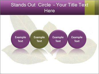 0000078154 PowerPoint Template - Slide 76