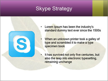 0000078154 PowerPoint Template - Slide 8