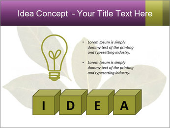 0000078154 PowerPoint Template - Slide 80