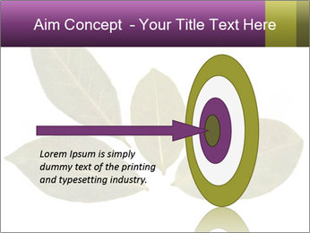 0000078154 PowerPoint Template - Slide 83