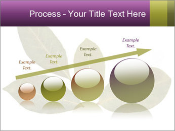 0000078154 PowerPoint Template - Slide 87