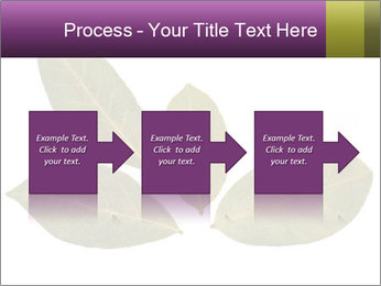 0000078154 PowerPoint Template - Slide 88