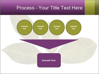0000078154 PowerPoint Template - Slide 93