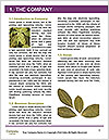 0000078154 Word Templates - Page 3