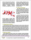 0000078154 Word Templates - Page 4