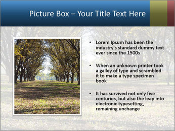 0000078166 PowerPoint Template - Slide 13
