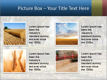 0000078166 PowerPoint Template - Slide 14