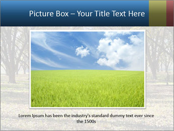0000078166 PowerPoint Template - Slide 15