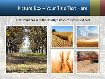 0000078166 PowerPoint Template - Slide 19