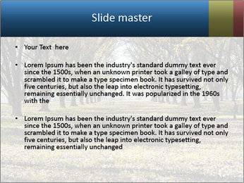 0000078166 PowerPoint Templates - Slide 2