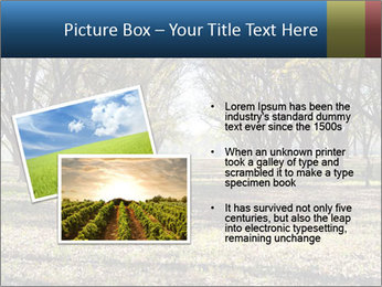0000078166 PowerPoint Template - Slide 20