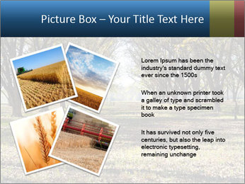 0000078166 PowerPoint Template - Slide 23