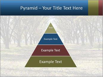 0000078166 PowerPoint Templates - Slide 30