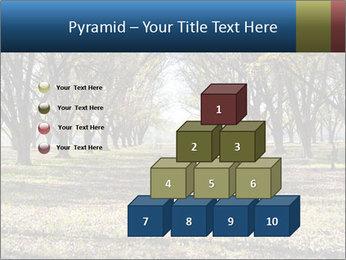 0000078166 PowerPoint Templates - Slide 31