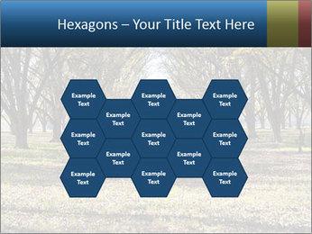 0000078166 PowerPoint Templates - Slide 44