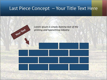 0000078166 PowerPoint Template - Slide 46