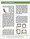 0000078173 Word Template - Page 3