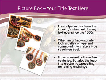 0000078177 PowerPoint Template - Slide 17