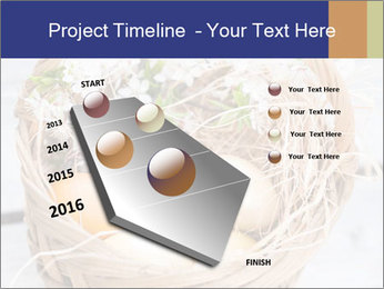 0000078181 PowerPoint Templates - Slide 26