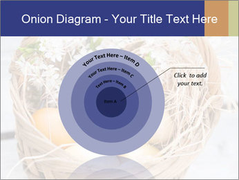 0000078181 PowerPoint Template - Slide 61