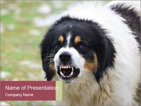 0000078182 PowerPoint Templates