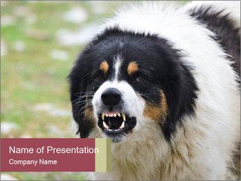 0000078182 PowerPoint Template - Slide 1