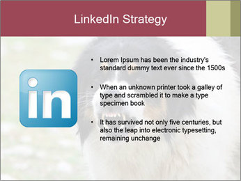 0000078182 PowerPoint Template - Slide 12