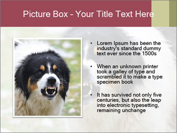 0000078182 PowerPoint Template - Slide 13