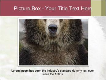 0000078182 PowerPoint Template - Slide 15