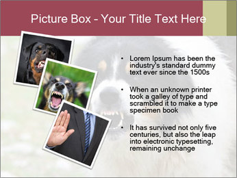 0000078182 PowerPoint Template - Slide 17