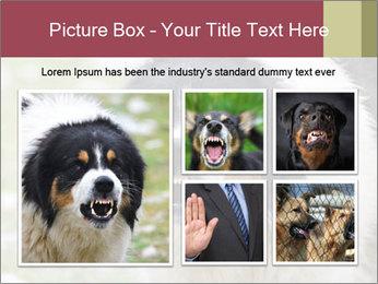0000078182 PowerPoint Template - Slide 19
