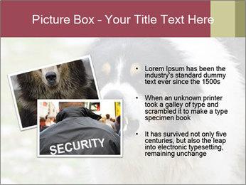 0000078182 PowerPoint Template - Slide 20