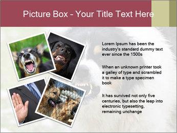 0000078182 PowerPoint Template - Slide 23