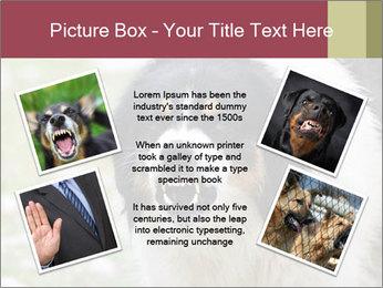 0000078182 PowerPoint Template - Slide 24