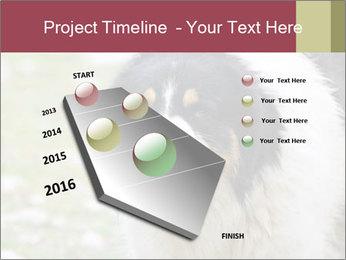 0000078182 PowerPoint Template - Slide 26