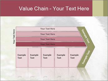 0000078182 PowerPoint Template - Slide 27