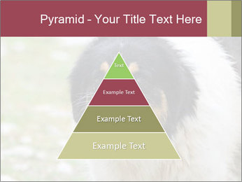 0000078182 PowerPoint Template - Slide 30