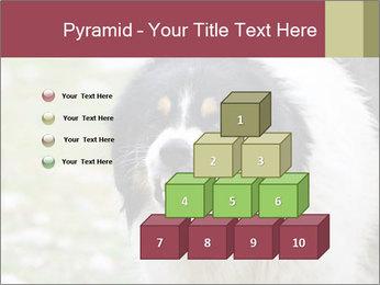 0000078182 PowerPoint Template - Slide 31